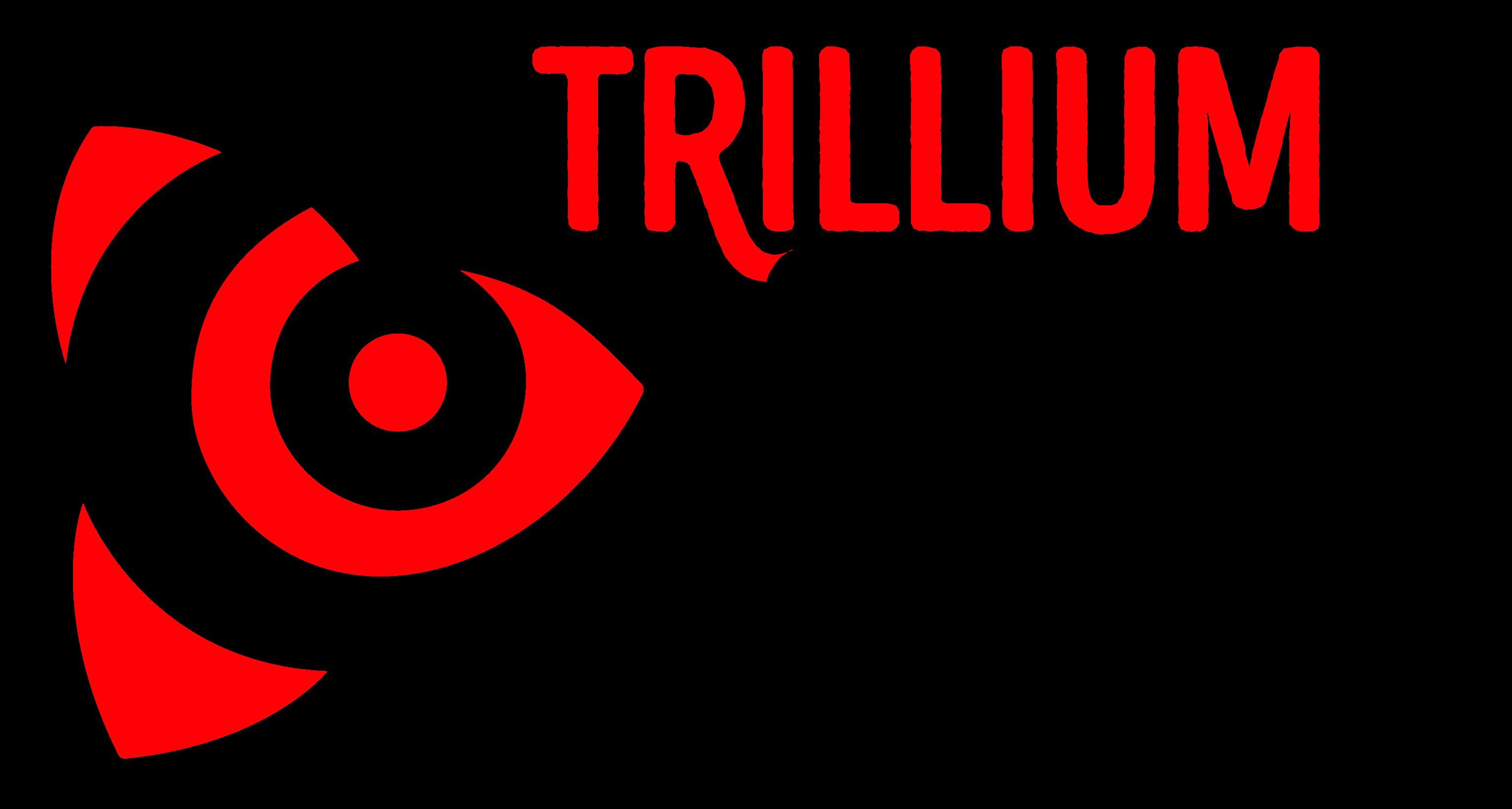 Trillium Curling Camp